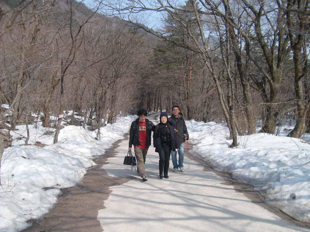 설악산 입구 산책로
